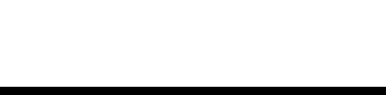 unbridled travel Logo